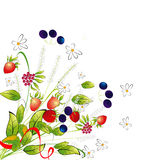 Grupo de flores e de bagas Imagens de Stock Royalty Free