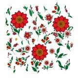 Grupo de flores e de elementos florais ilustração royalty free