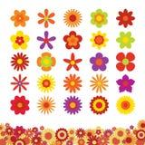 Grupo de flores isoladas no fundo branco Fotos de Stock Royalty Free