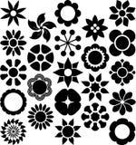 Grupo de flores ized Fotografia de Stock Royalty Free