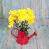 Grupo de flores no potenciômetro molhando na madeira Fotografia de Stock Royalty Free