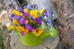 Grupo de flores selvagens imagem de stock