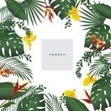 Grupo de flores tropicais estilizados ilustração royalty free