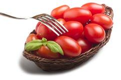Grupo de folhas do tomate e da manjericão Foto de Stock Royalty Free