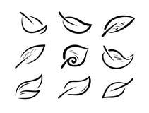 Grupo de folhas estilizados Natureza, logotipo da ecologia ou ícone Ilustração do vetor Imagem de Stock