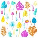 Grupo de folhas, de flores coloridas e de ervas tropicais brilhantes de tipos diferentes isoladas no fundo branco Ilustração do v ilustração do vetor