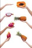 Grupo de fotos das mãos com frutos Fotos de Stock Royalty Free