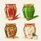 Grupo de frascos com vegetais Foto de Stock