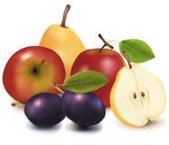 Grupo de fruta. Imagenes de archivo