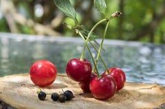 Grupo de fruta madurada fresca en el cojín de madera, las guindas rojas y la grosella negra foto de archivo