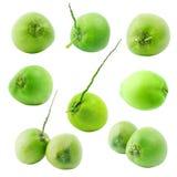 Grupo de fruta verde del coco aislada en el fondo blanco imágenes de archivo libres de regalías