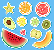 Grupo de fruto Imagens de Stock Royalty Free