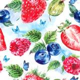 Grupo de fruto da aquarela em um fundo branco Fotografia de Stock Royalty Free