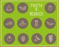 Grupo de fruto e de bagas da cópia do esboço Foto de Stock