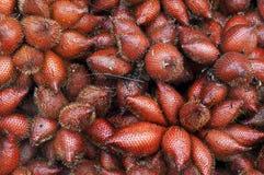 Grupo de fruto tropical famoso de Salacca Imagem de Stock Royalty Free