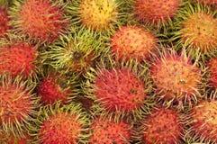 Grupo de fruto tropical famoso do rambutan Imagem de Stock