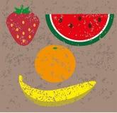 Grupo de frutos carimbados ilustração do vetor