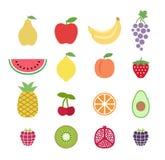 Grupo de frutos coloridos do clipart Ícones da fruta ajustados Coleção de ícones do fruto do clipart ilustração stock