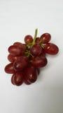 Grupo de frutos da uva vermelha Fotografia de Stock Royalty Free