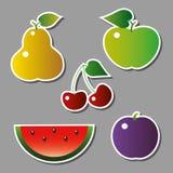 Grupo de frutos do vetor ilustração royalty free
