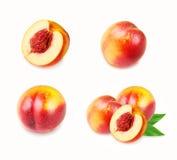 Grupo de frutos dos pêssegos no branco Foto de Stock Royalty Free