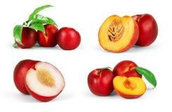 Grupo de frutos dos pêssegos no branco Nectarina co dos pêssegos Fotos de Stock Royalty Free