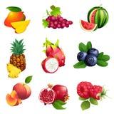 Grupo de frutos e de bagas com folhas Fotos de Stock Royalty Free