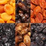 Grupo de frutos secados Foto de Stock Royalty Free