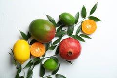 Grupo de frutos tropicais frescos imagens de stock
