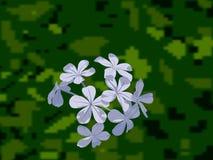 Grupo de fundo unfocused do verde do flowerswith ilustração royalty free