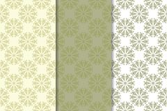 Grupo de fundos florais do verde azeitona pálido Testes padrões sem emenda Imagem de Stock