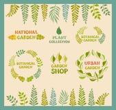 Grupo de fundos redondos botânicos do leafer do vetor Imagem de Stock Royalty Free