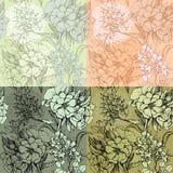 Grupo de fundos sem emenda - Patternhand sem emenda floral ilustração stock