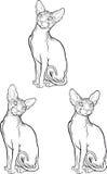 Grupo de gato do sphynx Ilustração do vetor Estilo do tatuagem Fotografia de Stock