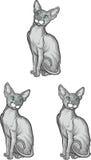 Grupo de gato do sphynx Ilustração do vetor Estilo do tatuagem imagens de stock