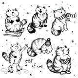 Grupo de gatos festivos Fotos de Stock Royalty Free