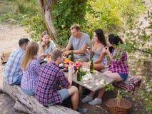 Grupo de gente joven que se sienta alrededor de una tabla afuera Gozan para charlar y para beber las cervezas fotos de archivo