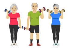 Grupo de gente mayor que ejercita entrenamiento de la pesa de gimnasia ilustración del vector
