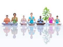 Grupo de gente sana en la aptitud Imagen de archivo libre de regalías