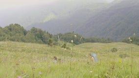 Grupo de gente turística que camina en montaña Turismo del viaje y de la montaña almacen de video