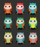 Grupo de gráfico colorido da coruja Fotos de Stock