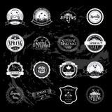 Grupo de gráficos do sinal do negócio e de crachá do logotipo ilustração do vetor