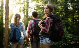 Grupo de hacer excursionismo a los caminantes que van para el senderismo del bosque Fotos de archivo libres de regalías
