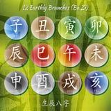 Grupo de hieróglifos chineses do shui do feng Fotos de Stock