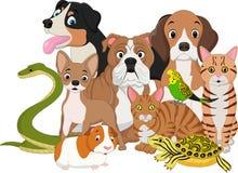 Grupo de historieta de los animales domésticos ilustración del vector