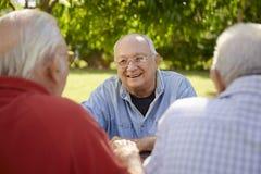 Grupo de hombres mayores que se divierten y que ríen en parque Imagenes de archivo