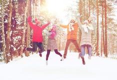 Grupo de homens e de mulheres de sorriso na floresta do inverno imagens de stock