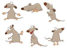 Grupo de ilustração dos desenhos animados Ratos bonitos para você projeto Imagem de Stock