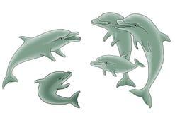 Grupo de ilustração dos golfinhos Fotografia de Stock