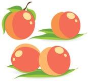 Grupo de ilustrações do vetor dos pêssegos ilustração stock